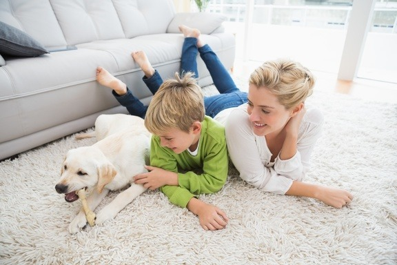 Air Purifier family with dog