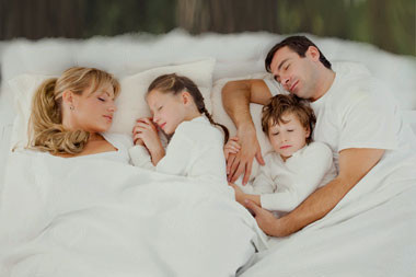 Tetra Adult Organic Pillow Family